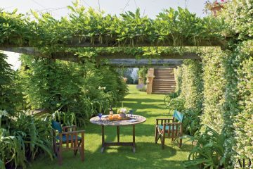 8 Benefits of Gardening in Shade