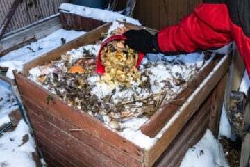 How to Compost in Winter